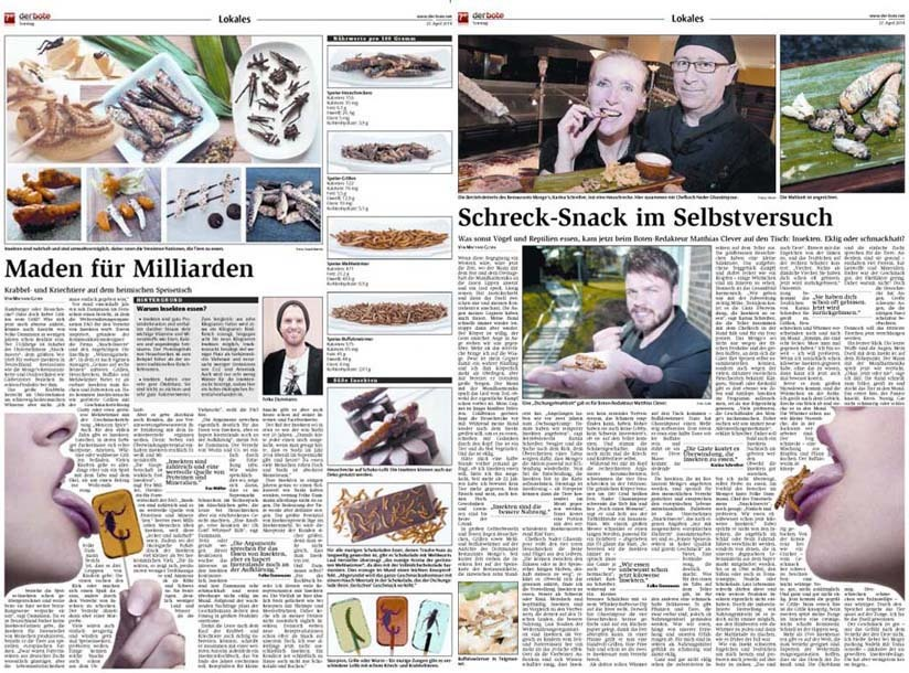 SNACK-INSECTS ESSBARE INSEKTEN INSEKTENSNACKS MADEN FÜR MILLIARDEN