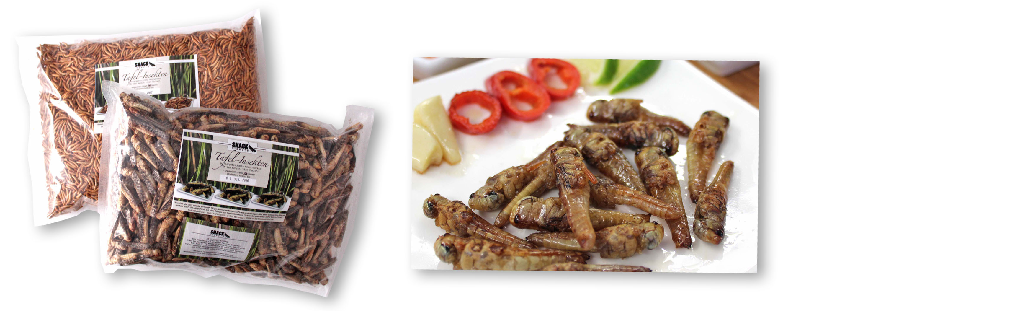 Snack-Insects_Gastrobags