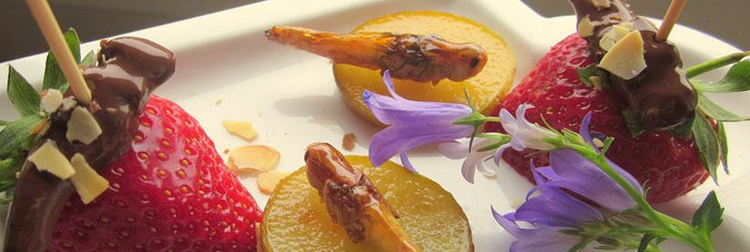 Essbare Insekten von Snack-Insects essen bestellen und kaufen bei WUESTENGARNELE.DE