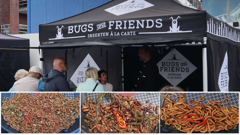bugs_and_friends_insekten_streetfood_mit_essbaren_insekten