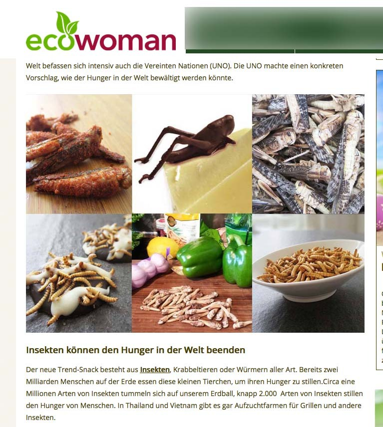 eco_woman_snack-insects_bericht