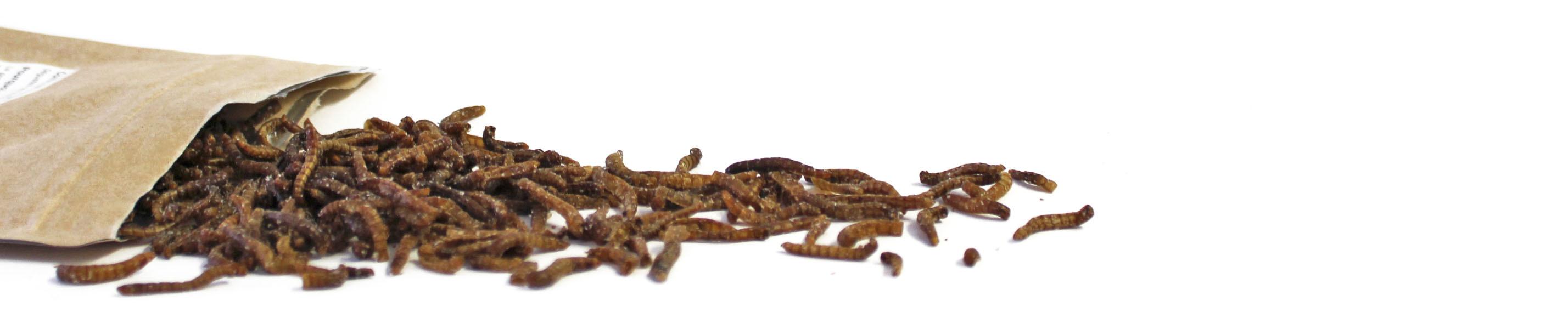 gew rzte essbare insekten als snack kaufen. Black Bedroom Furniture Sets. Home Design Ideas