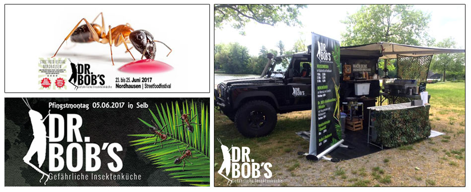 Snack-Insects_essbare_Insekten_fur_Streetfood_Markte_und_Events